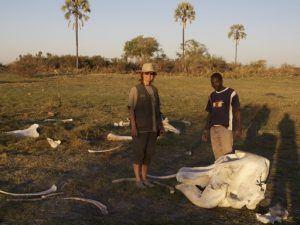 Okavango Delta Boat Safari
