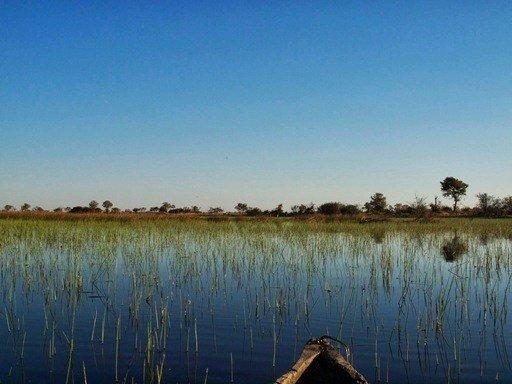 Makoro Trip and Lodges Botswana Okavango delta, camping.