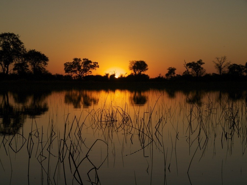 Best Lodges Okavango Delta, Camping and Activities