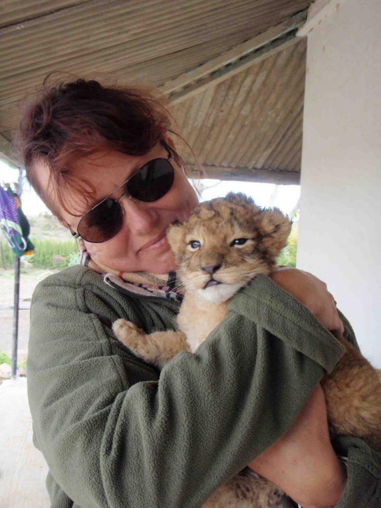 Zu Besuch auf einer Löwenfarm. Die Löwen-Babies bewegen sich frei in der Küche und um's Haus herum, während die Eltern in einem Gehege nebenan leben.
