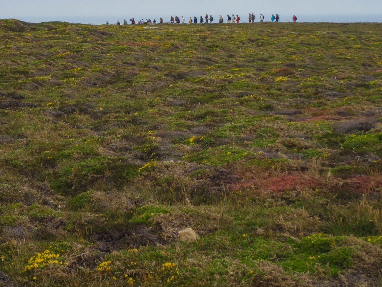 walks along the coast for 1200 kilometres