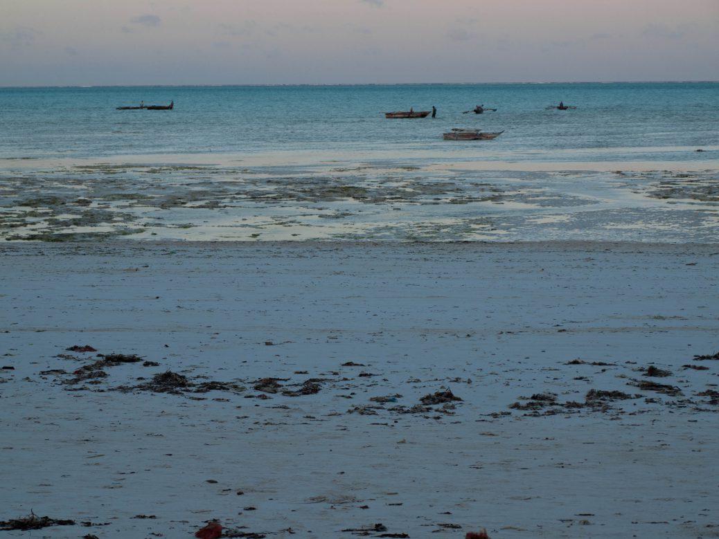 Zanzibar's turquoise waters