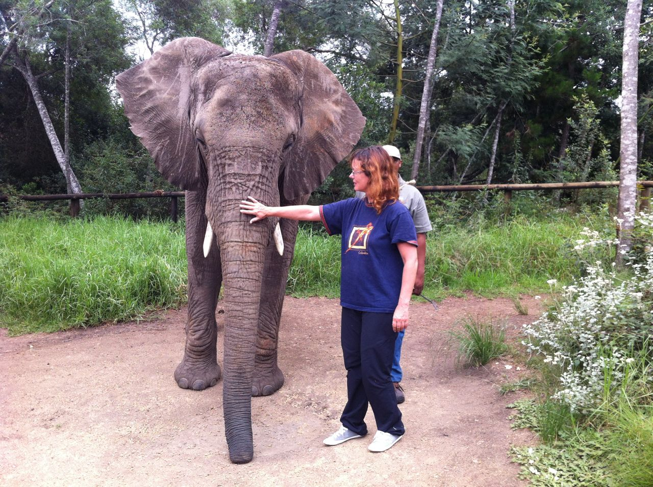 Elephant Sanctuary, Plettenberg Bay © greyworldnomads