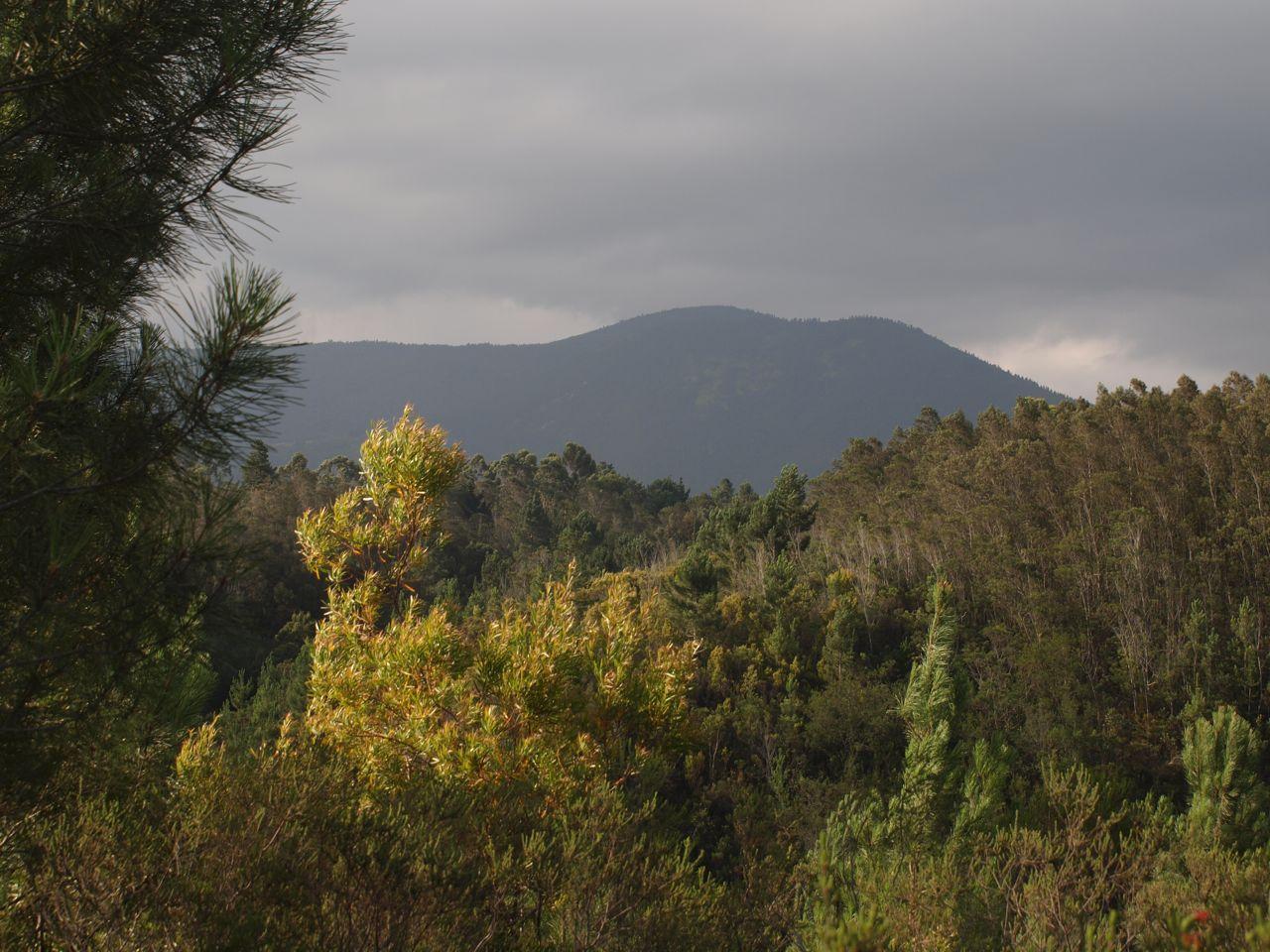 View of the Outeniqua Mountains © greyworldnomads