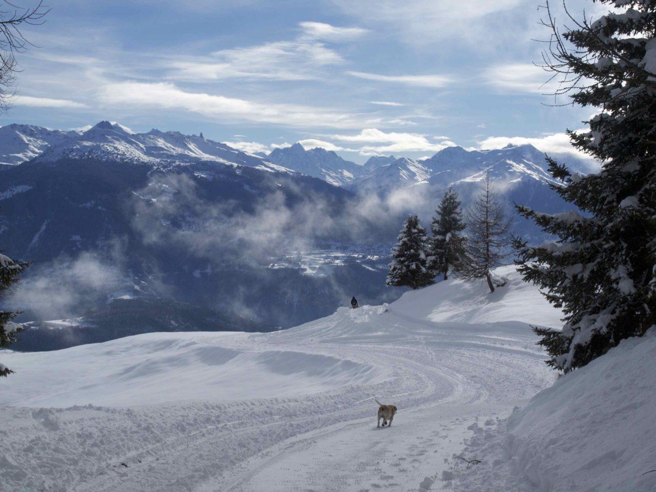 Visit Switzerland in Winter   11 Insider Budget Tips