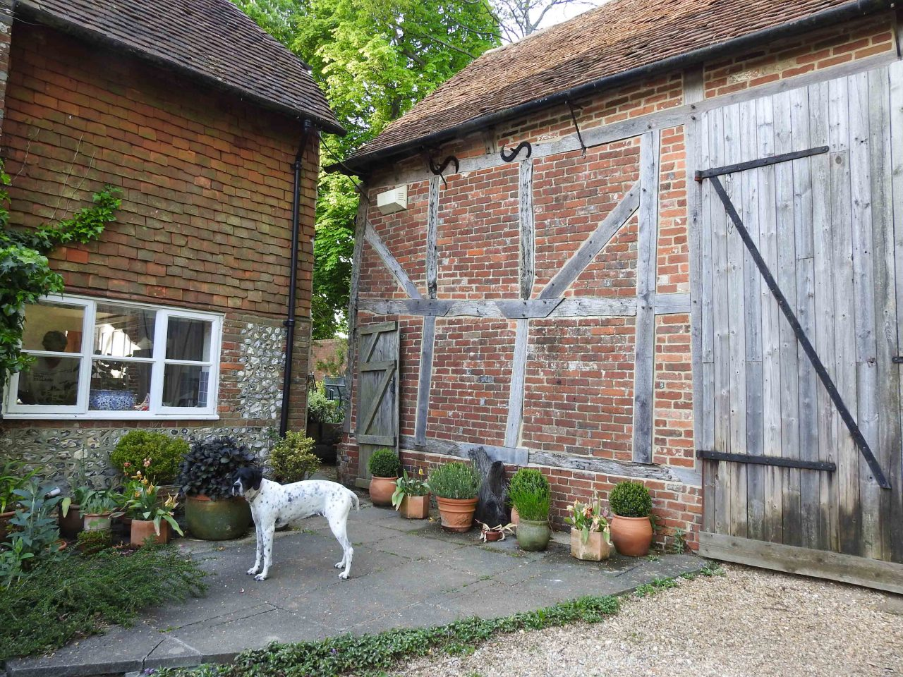 House & Dog Sit in Swanmore, Hampshire