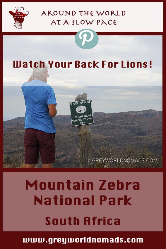 mountain-zebra-national-park-2