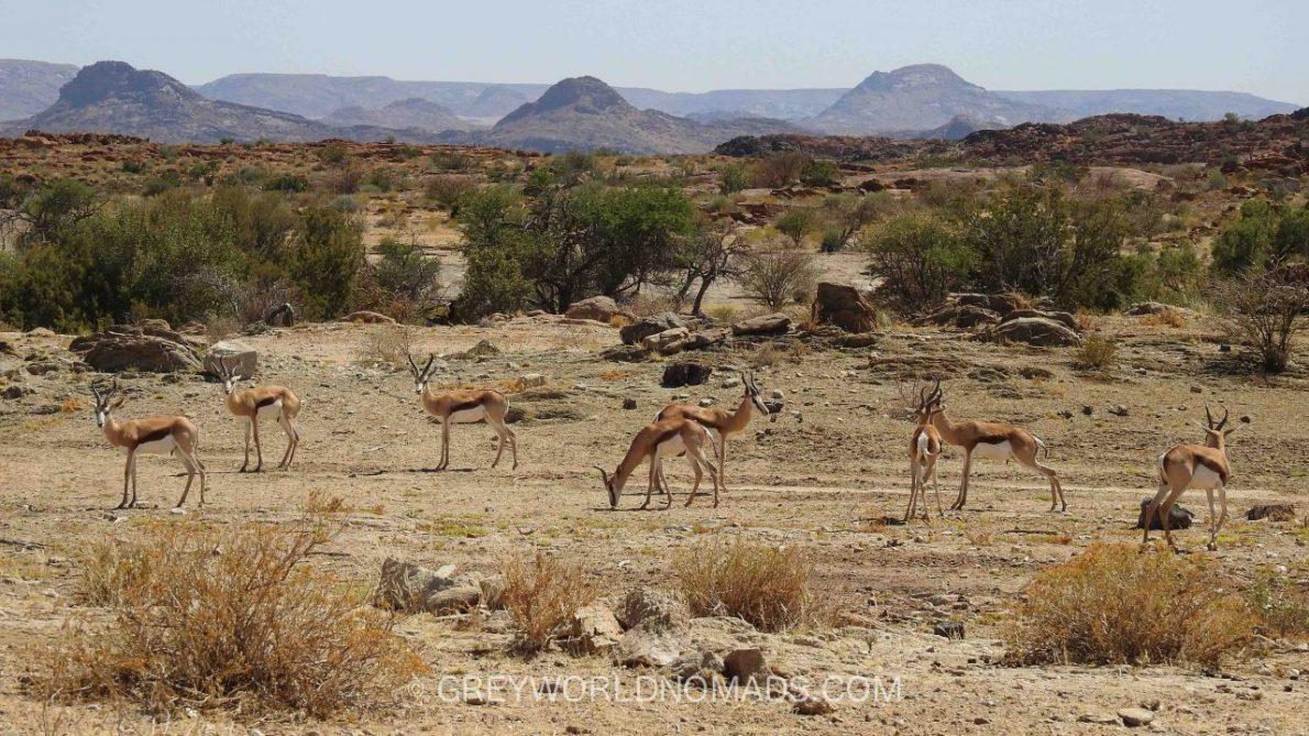 augrabies-falls-nationalpark-southafrica-9-2.jpg