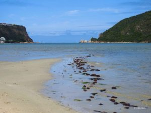 Marcelle's Photography: Knysna, South Africa