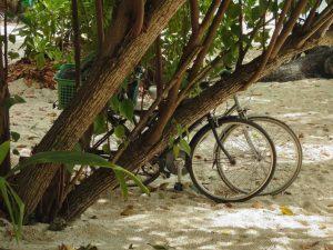 Fahrradverleih La Digue, Seychellen Erfahrungsberichte
