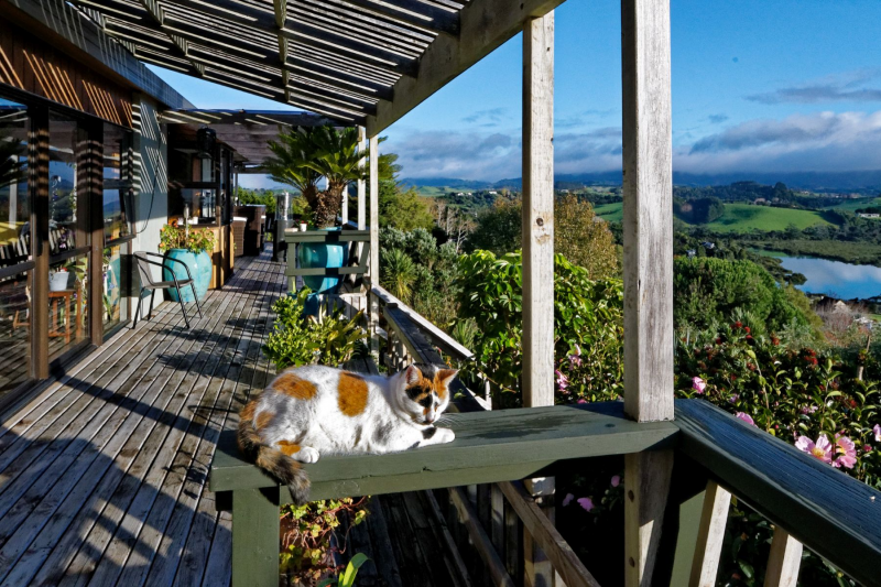 Help out at a lovely B&B located in the northern parts of New Zealand