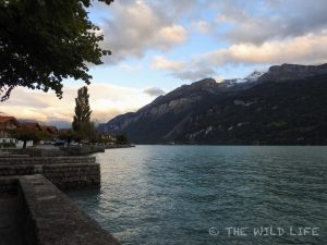 Brienz is a charming little town at the Lake Brienz embedded in the alps of Switzerlands Berner Oberland keeping its Swiss traditions like wood-carving alive.