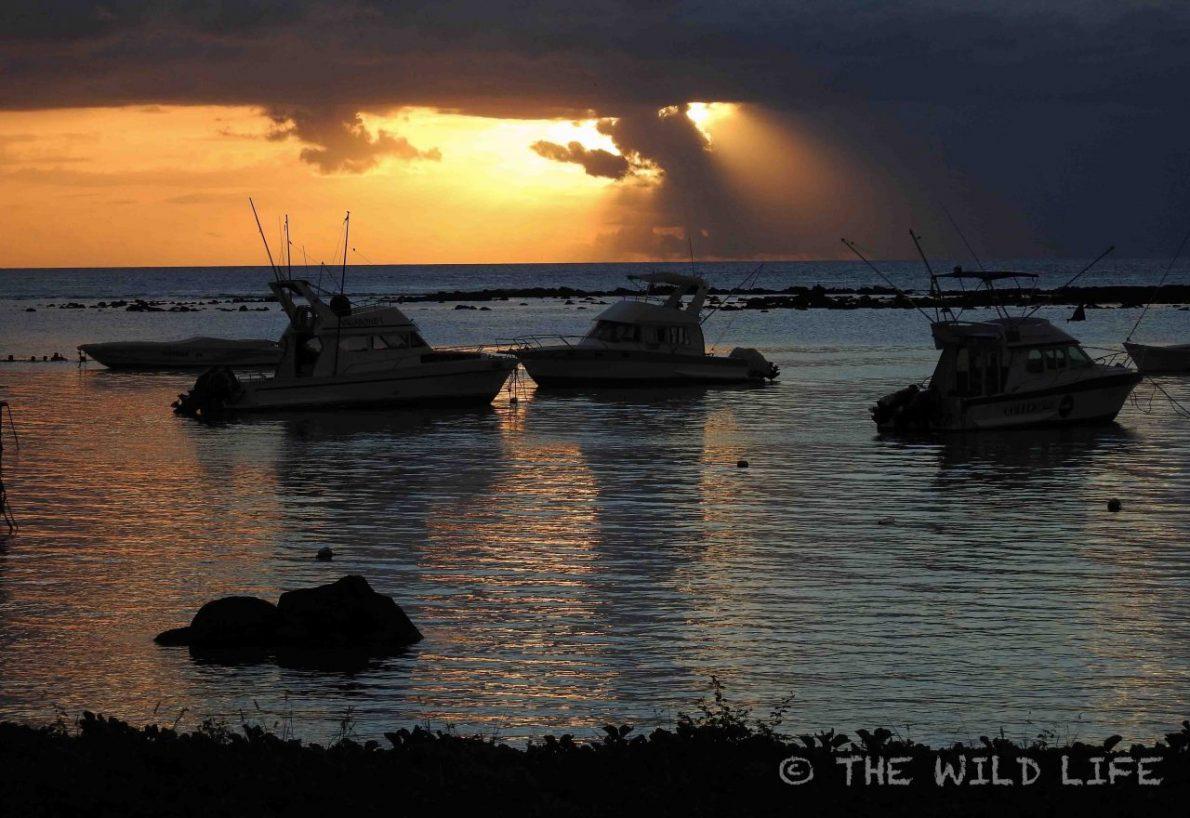 mauritius-island-18