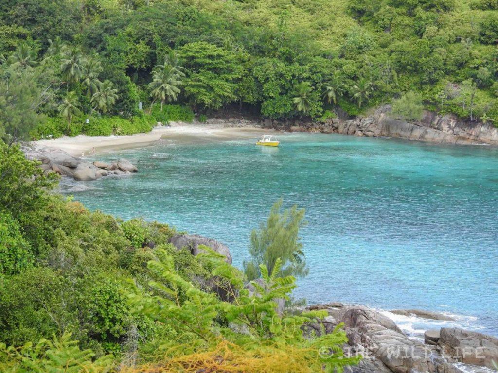 cost of snorkeling in seychelles. seychelles tourist information. i love seychelles.