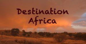 Destination Africa - Travel