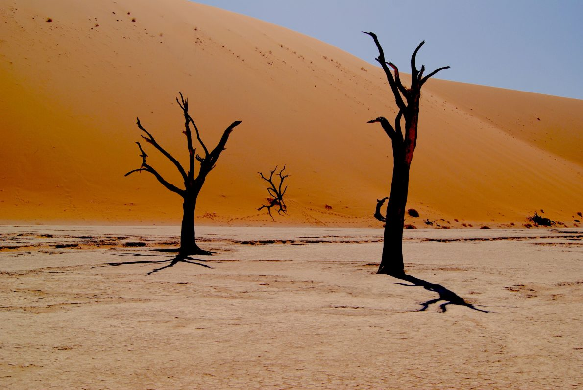 Camping in Namibia with Kids. Find out What to Do in Namibia, Top 10 Activities with Kids. Camping Maps and Lodges around Windhoek. Things to Know about Namibia Safari Tours with Kids. Do's and Don'ts of Driving in Namibia. Places of Interest in Namibia. Comprehensive Travel Guide for your Family Holiday in Namibia.