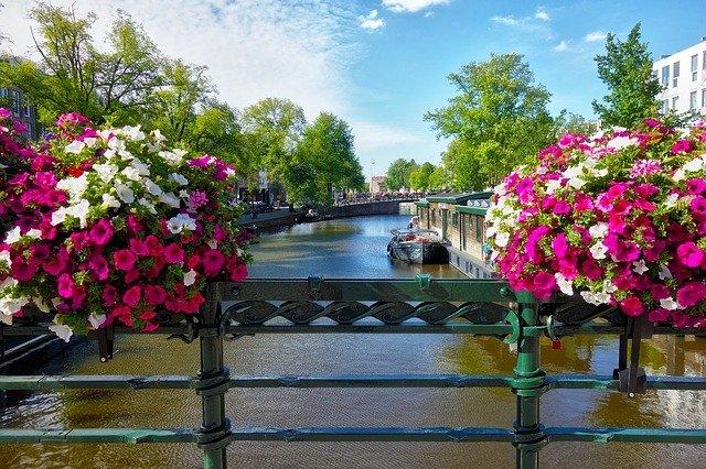 Tulpenblüte in Amsterdam 2018, wo liegt der Keukenhof in Holland, Fahrt zum Keukenhof, Tulpenfelder Holland besuchen, wann blühen die Tulpen in Amsterdam, Keukenhof Hunde erlaubt. Keukenhof Holland 2019.