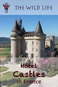 Plan your chateau holidays in France! Castles near Paris and Burgundy, France 's famous Wine Region, Loire Valley Chateau Hotels, Castles in southern France, Fairy-tale Castle Hotels in Provence, in BordeauRegion or Chateau Hotels in northern France. Compare prices of the best castles in France! #castle #france #chateau #royal #castello #schloss #castillo #castelo #beautifuldestinations #wonderful_places #bestvacations #holiday #tourism