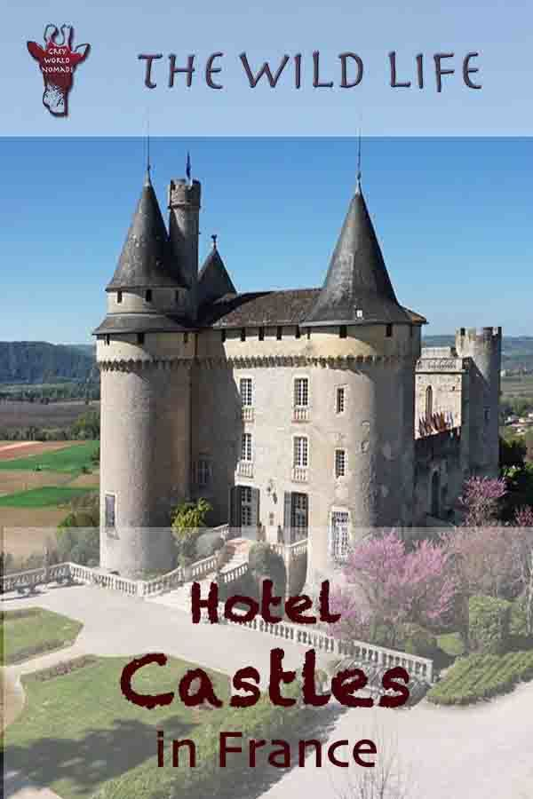 Plan your chateau holidays in France! Castles near Paris and Burgundy, France 's famous Wine Region, Loire Valley Chateau Hotels, Castles in southern France, Fairy-tale Castle Hotels in Provence, in BordeauRegion or Chateau Hotels in northern France. Compare prices of the best castles in France!