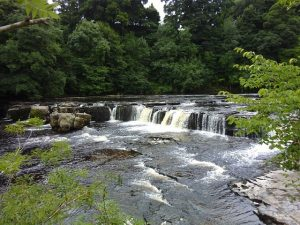 Aysgarth Waterfall Yorkshire Dales National Park