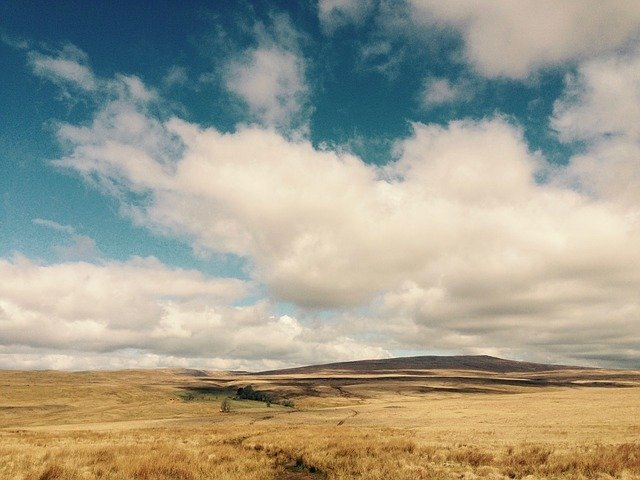 Pure nature at Brecon Beacons National Park.