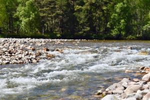 What to do in Cairngorms National Park UK