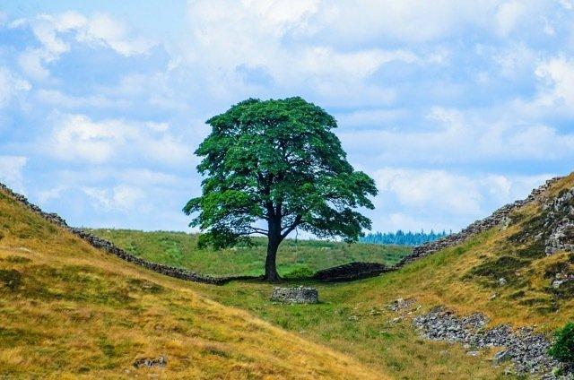 Northumberland National Park: UK self-drive tours.