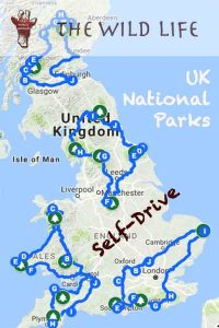 Plan your National Parks UK Self-Drive Tours: Lake District England, Yorkshire Dales National Park, Peak District, Loch Lomond National Park, North York Moors National Park, Pembrokeshire Wales, Cairngorms National Park Scotland, Brecon Beacons National Park, South Downs National Park England, Northumberland National Park England, Snowdonia National Park Wales, Exmoor National Park Devon, Dartmoor National Park, The Broads National Park. #traveltips #roadtrip