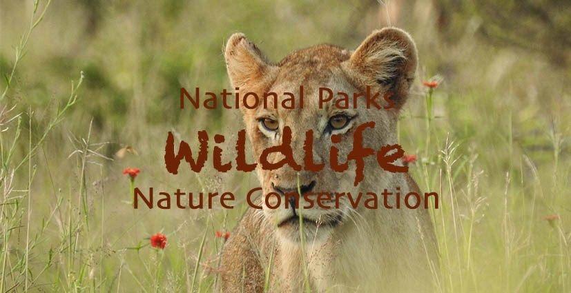 National Parks Wildlife Nature Conservation