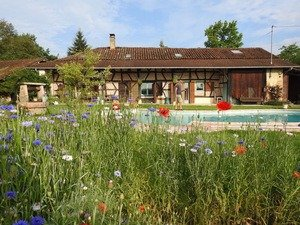 Where to live in France to live the good life: Burgundy | Where to retire cheaply in France - the best place to live in France.