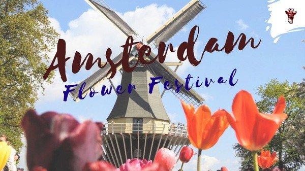 Amsterdam Flower Festival, Tulip Fields Holland, Tulip Fields Netherlands